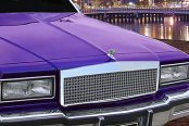 E&G Classics® - Low Profile Dual Weave Chrome Mesh Grille