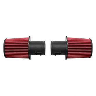 Fabspeed® - BMC™ F1 Carbon Fiber Air Filter