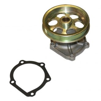 ACDelco 252-194 Professional Water Pump Kit
