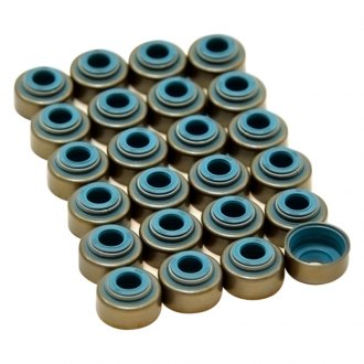 GSC Power-Division® - Valve Stem Seals