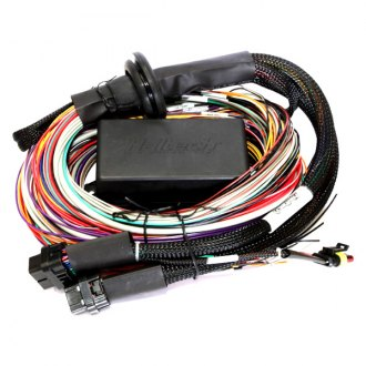 Haltech® - Elite 2500 Wiring Harness