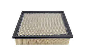 Hastings® AF1032 - Air Filter