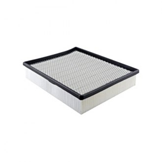 Hastings® - Panel Air Element