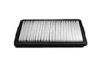 Hastings® - Air Filter