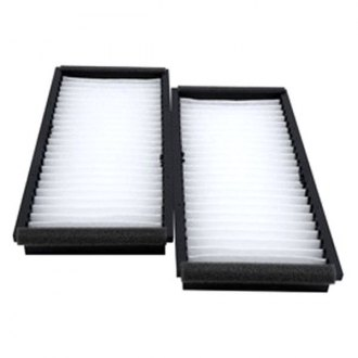 Hastings® - Cabin Air Filter Set