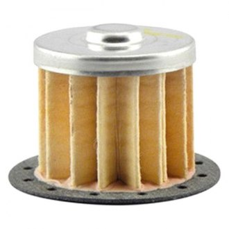Hastings® - Fuel Filter Element