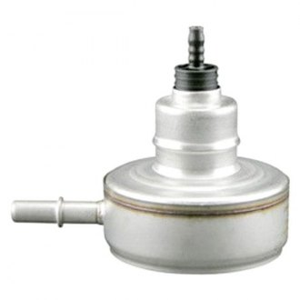 Hastings® - Fuel Regulator Element