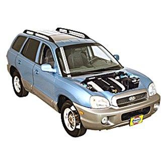 2004 hyundai santa fe auto repair manuals at carid com rh carid com 2004 hyundai santa fe service manual pdf 2004 Hyundai Santa