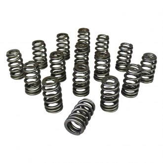 Howards Cams® - Nitrited Beehive™ Inverted Conical Valve Springs