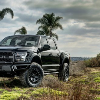 Apollo Ford Raptor With Black Rhino
