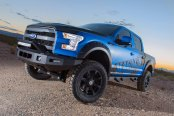 Lifted 2016 Ford F150 with ICI magnum side steps and bumpers