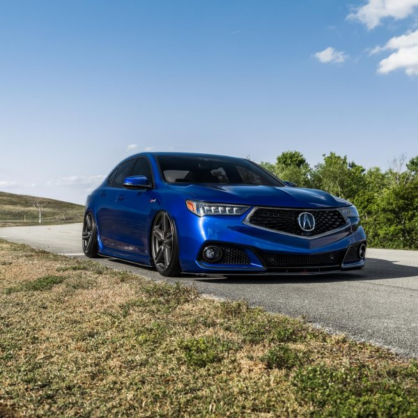 Blacked Out Mesh Grille on Blue Acura TLX - Photo by Vossen