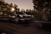 Mysterious Black Alfa Romeo 4C Fitted with with Custom Parts
