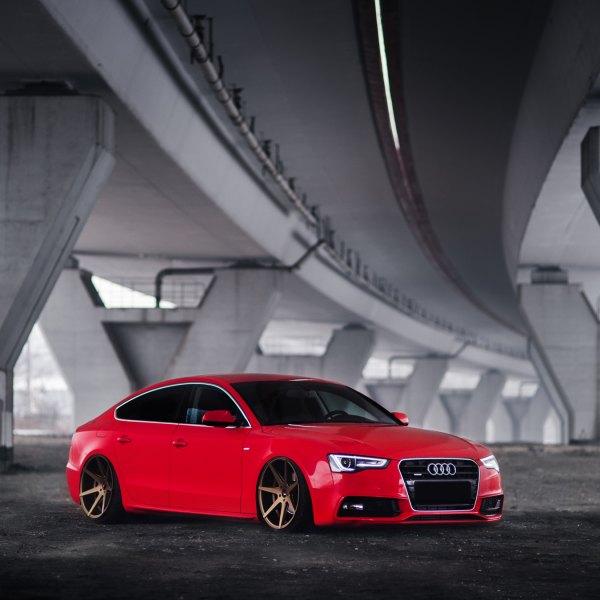 2008 Audi S5 Interior: Images, Mods, Photos, Upgrades