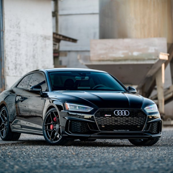 Custom Audi S5 | Images, Mods, Photos, Upgrades — CARiD com