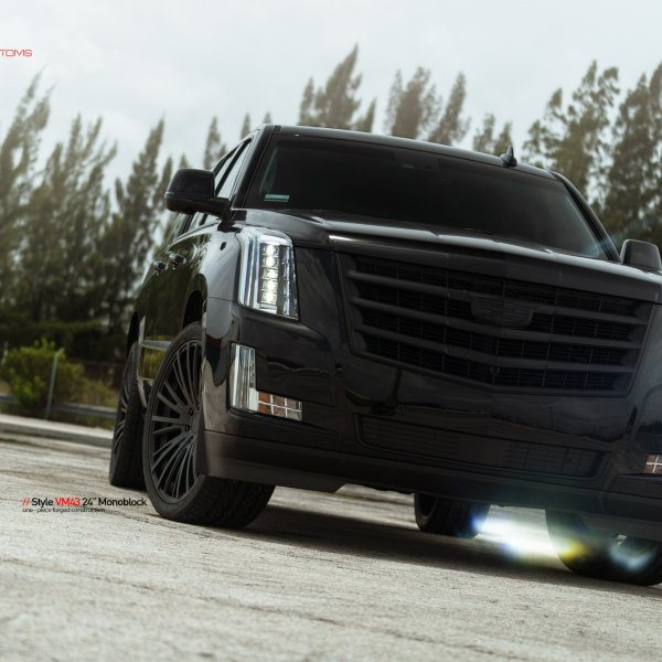 Custom 2017 Cadillac Escalade