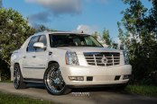 Stylish Presence of Custom White Cadillac Escalade Fitted with Chrome Mesh Grille