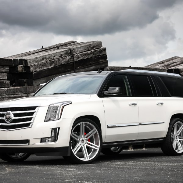 2010 Cadillac Escalade Esv Premium: Images, Mods, Photos, Upgrades — CARiD.com Gallery