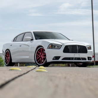 Blacked Out Mesh Grille on White Dodge Charger - Photo by Rohana Wheels