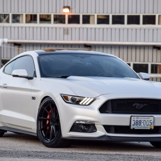 Neatly Tuned White Ford Mustang 5.0