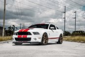 Modified White Ford Mustang GT500 with Attitude