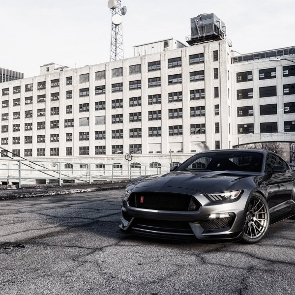 Black Ford Mustang with Aftermarket Mesh Grille - Photo by Forgiato
