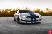 Blue Stripes Reveal the Sporty Character of Gray Ford Mustang Shelby