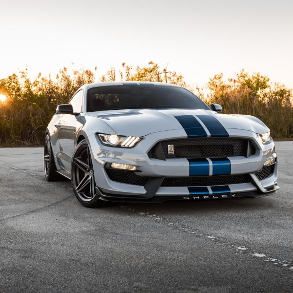 Custom Gray Ford Mustang Shelby with Blue Stripes - Photo by Vossen