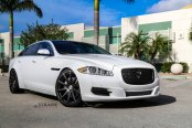 Neat White Jaguar XJ-Type Gets A Blacked Out Mesh Grille