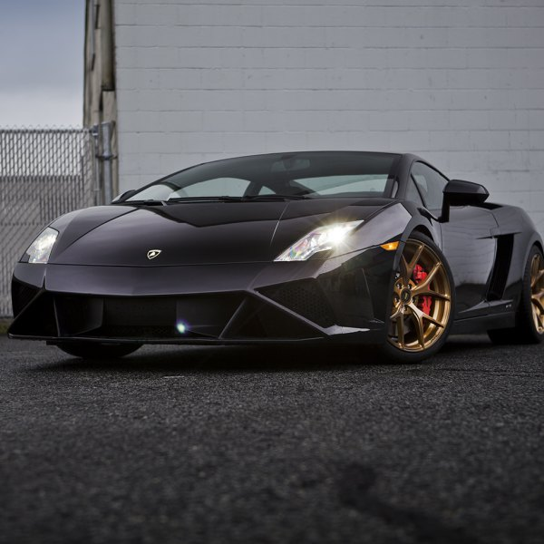 Custom Lamborghini Gallardo Images Mods Photos Upgrades Carid