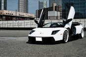 Black and White Lambo Murcielago on Custom Wheels