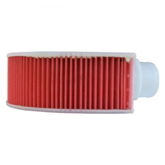Luber-finer® - Special Configuration Air Filter