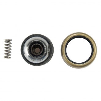 MOOG® - Wheel Hub Repair Kit