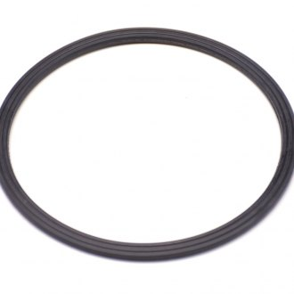 Mopar® - Water Pump Gasket