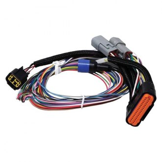 MSD® - Ignition Wire Harness