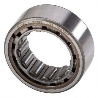 National® - Rear Differential Pinion Pilot Bearing