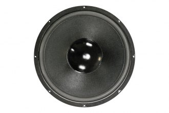 "Nippon America® - 12"" Replacement 350W Subwoofer"