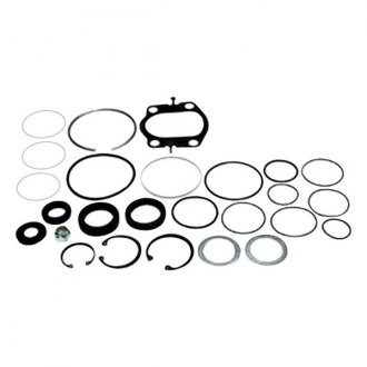 Omega® - Steering Gear Seal Kit