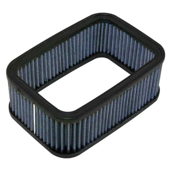 Omix-Ada® - Weber Air Filter