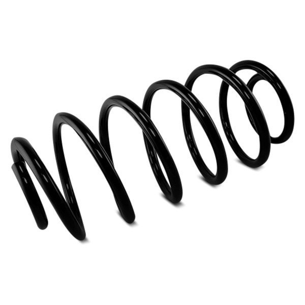 Omix-Ada® - Coil Spring