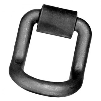 Pacific Cargo Control® - Forged D-Ring