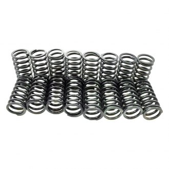 Pioneer Automotive® - Engine Valve Spring Kit