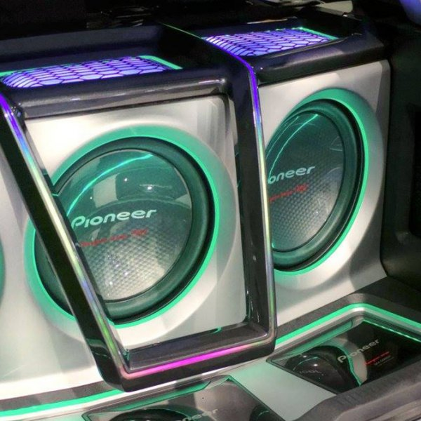 Pioneer® - Champion Pro Series Subwoofer