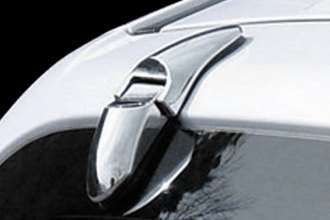 Putco® - Chrome Rear Hinge Covers