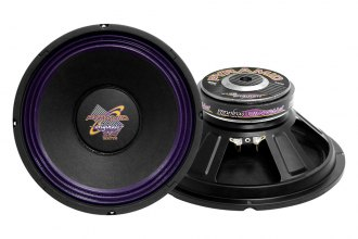 "Pyramid® - 10"" 300 Watt High Power Paper Cone Subwoofer"