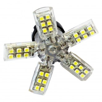 Race Sport® - Spyder 5050 LED Replacement Bulbs (1156)