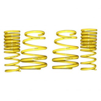 Racecomp Engineering® - Lowering Springs