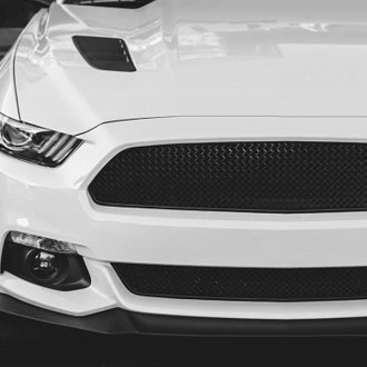 2015 Ford Mustang Wire Mesh Grilles Carid. Racemesh 2pc Onechamber Version Gothic Style Black Mesh Main And. Ford. 2015 Ford Mustang Wiring At Scoala.co