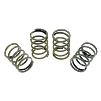 Raybestos® - Professional Grade™ Rear Drum Brake Hold Down Springs