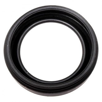Raybestos® - Professional Grade™ Front Disc Brake Caliper Seal Kit